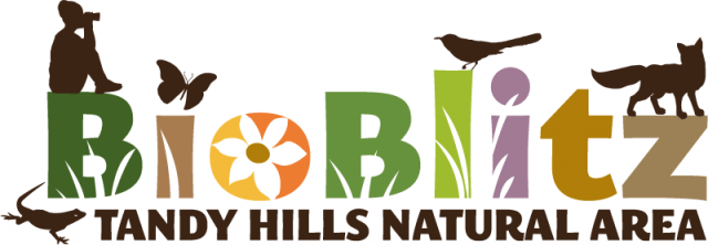 Students to get down and dirty for Earth Day at BioBlitz