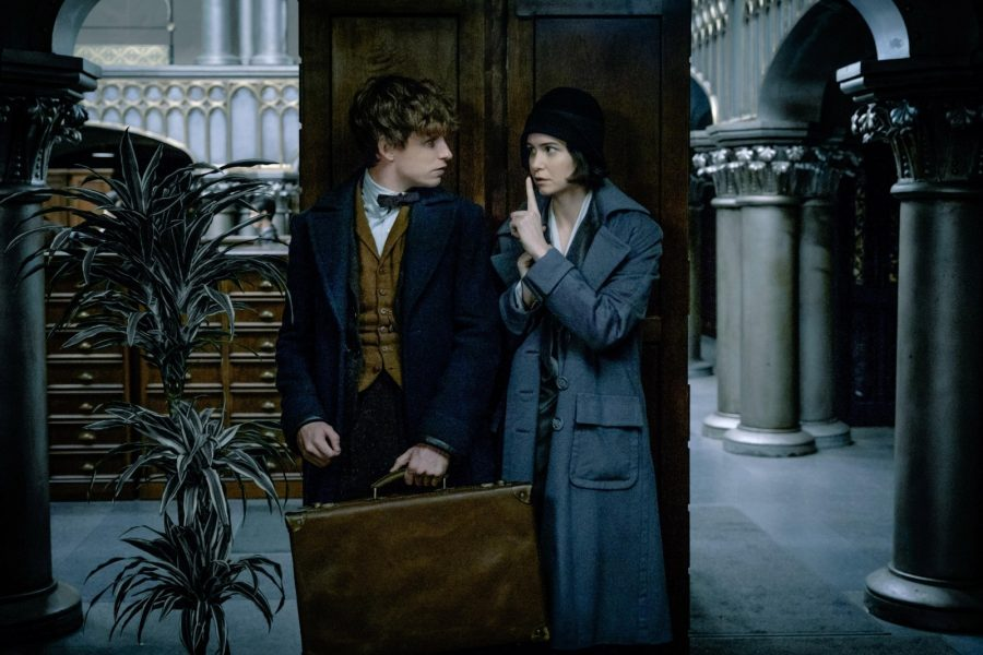 Eddie Redmayne (left) and Katherine Waterston (right)  perfom in the film adaption of Fantastic Beasts and Where to Find Them, which opens Nov. 17.