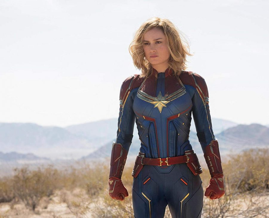 %E2%80%9CCaptain+Marvel%E2%80%9D+stars+Brie+Larson+as+Vers+and+Samuel+L.+Jackson+as+Nick+Fury%2C+with+their+cat+partner+Goose.+%0APhoto+by+IMDb
